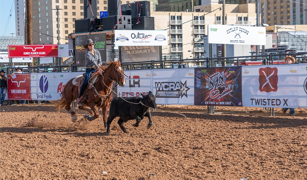 NFR 2019