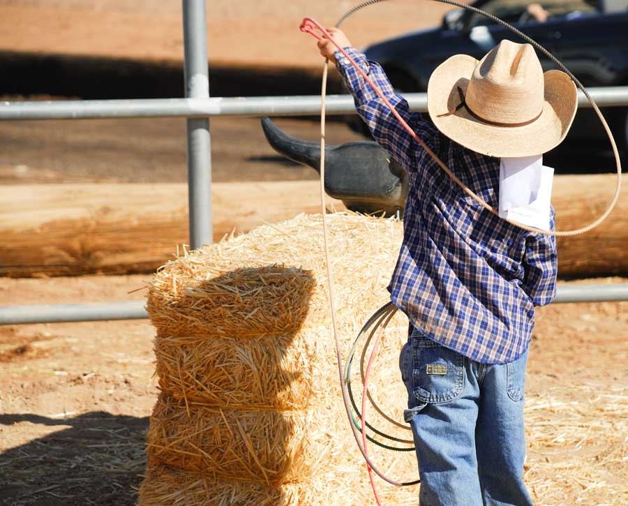 young girl with a lasso at the national finals rodeo